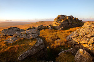 Golden light shining on Beardown Tor, Dartmoor