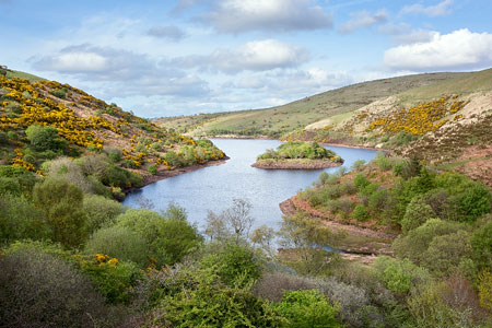View overlooking Meldon Reservoir, Dartmoor
